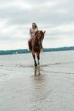 Молодая женщина на лошади стоковое фото rf