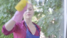 Молодая женщина портрета прелестная белокурая в голубой рисберме моя окно с ветошью окна в комнате Очищая день E акции видеоматериалы