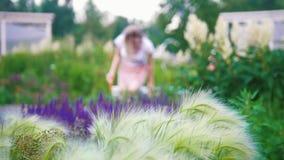 Молодая женщина пришла к саду вокруг красивых цветков сидя вниз для того чтобы прочитать книгу сток-видео