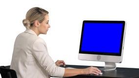 Молодая женщина работая в офисе, сидящ на столе, смотря монитор, белая предпосылка Дисплей модель-макета голубого экрана стоковые фотографии rf