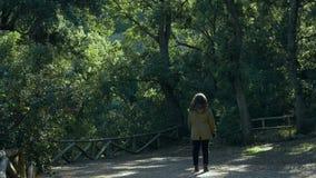 Молодая женщина смотрит огромные деревья вокруг ее в лесе видеоматериал