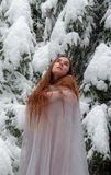 Молодая женщина с длинными волосами в зиме, с длинным белым льдом платья в замораживаниях снега в зиме перед покрытыми снег дерев стоковая фотография