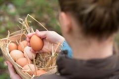 Молодая женщина фермера держа свежее яичко курицы и другие яичка внутри стоковая фотография