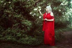 Молодая женщина эльфа в fairy лесе Стоковая Фотография RF