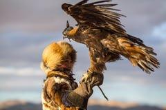 Молодая женщина Berkutchi Huntress орла казаха с лошадью пока охотящся к зайцам с беркуты на его оружиях Стоковая Фотография
