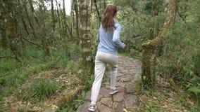 Молодая женщина jogging в тропическом лесе акции видеоматериалы