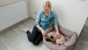Молодая женщина pet ее собака сидя на поле видеоматериал