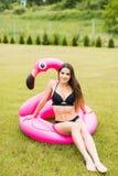 Молодая и сексуальная девушка имея потеху и смеясь над и имея потехой на траве около бассейна на раздувном розовом фламинго в куп стоковое фото rf
