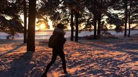 Молодая кавказская девушка с рюкзаком идя на дорогу леса зимы в покрытом снегом сосновом лесе зимы на заходе солнца прогулка акции видеоматериалы