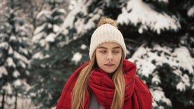 Молодая красивая девушка внутри в теплых одеждах идя около рождественских елок движение медленное Портрет стильных детенышей сток-видео