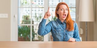 Молодая красивая женщина redhead дома стоковое фото