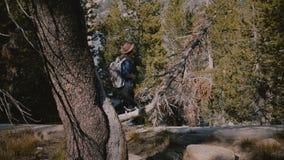 Молодая красивая туристская девушка с рюкзаком самостоятельно глубоко в древесинах на замедленном движении леса национального пар видеоматериал