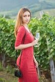 Молодая красота брюнет в виноградниках стоковые фотографии rf