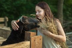 Молодая крестьянская женщина приниманнсяый за обрабатывать землю на ранчо стоковое фото