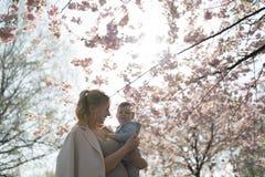 Молодая мама матери держа ее маленького ребенка мальчика сына младенца под цвести вишневыми деревьями САКУРЫ с падая розовыми леп стоковое изображение rf