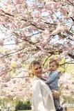 Молодая мама матери держа ее маленького ребенка мальчика сына младенца под цвести вишневыми деревьями САКУРЫ с падая розовыми леп стоковые изображения