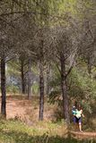 Молодая мать нося ее сынка и гуляя через древесины Стоковые Изображения