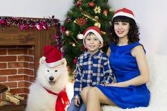 Молодая мать с ее сыном и собакой на рождественской елке стоковые фото