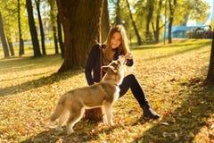 Молодая милая девушка тренирующ и накормленася с рук красного с волосами сиплого щенка стоковое фото