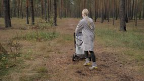 Молодая милая мама идя в парк с прогулочной коляской Слушать к нот и танцевать