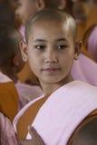 Молодая монашка послушника - Bago - Myanmar Стоковая Фотография RF