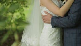 Молодая невеста обнимает ее любовника Любящие пары обнимая один другого в парке среди зеленых листьев сток-видео