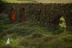 Молодая невеста около травянистого brickwall в зеленом ландшафте острова Мигеля Sao Стоковое Фото