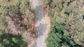 Молодая привлекательная сфокусированная женщина нося розовое обмундирование и ехать ее велосипед через взгляд трутня леса Задейст акции видеоматериалы