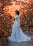 Молодая принцесса идет в золотую природу осени стоковое фото rf