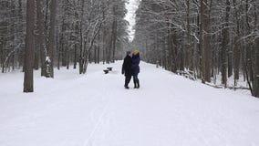 Молодая прогулка пар в снеге покрыла парк дерева на зимнем времени 4K видеоматериал