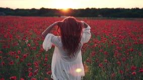 Молодая рыжеволосая женщина бросает волосы в воздух в цветя поле маков на заходе солнца, замедленном движении сток-видео