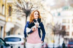 молодая рыжеволосая кавказская женщина с веснушками на собаке породы чихуахуа владениями стороны черно-белой shaggy _ стоковые фотографии rf