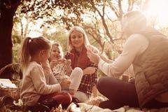 Молодая семья на пикнике в парке Стоковые Изображения