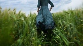 Молодая счастливая белокурая девушка бежит на зеленом пшеничном поле в вечере на фоне неба дождя Взгляд от акции видеоматериалы