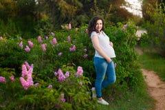 Молодая счастливая беременная женщина ослабляя и наслаждаясь жизнь в природе съемка туманнейшего острова падения напольная Copysp стоковая фотография