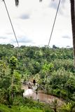 Молодая туристская женщина отбрасывая на скале в тропическом лесе джунглей и реке тропического острова Бали Качание среди 2 стоковые изображения