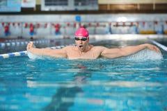 Молодое атлетическое заплывание человека Стоковая Фотография RF
