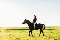 Молодое привлекательное катание девушки на лошади залива Стоковые Фотографии RF