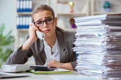Молодой бухгалтер коммерсантки работая в офисе Стоковое фото RF