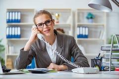 Молодой бухгалтер коммерсантки работая в офисе Стоковое Фото