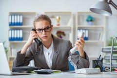 Молодой бухгалтер коммерсантки работая в офисе Стоковое Изображение