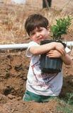 Молодой вал удерживания мальчика для засаживать Стоковая Фотография