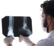 Молодой доктор смотря изображения рентгеновского снимка изолированные на белизне стоковые фото
