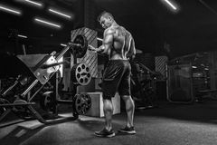 Молодой красивый мужской тяжелоатлет культуриста спортсмена, делая тренировку стоковое фото