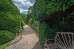Молодой мальчик посещая сад, замок Powis, Уэльс стоковые изображения rf