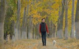 Молодой мальчик с мальтийсной собакой стоковая фотография rf