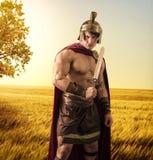 Молодой мышечный человек представляя в костюме гладиатора Стоковые Изображения RF