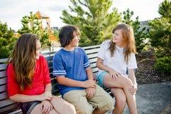 Молодой подросток имея потеху и говорить Стоковое Изображение