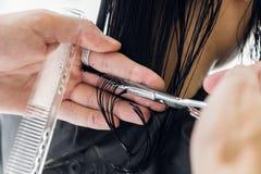 Молодой профессиональный тазобедренный мужской парикмахер режа темные волосы женщины клиента на салоне стоковое изображение