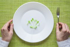 Молодой салат на плите Юмористическая концепция диеты Стоковая Фотография